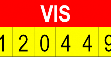 visvinvehicular